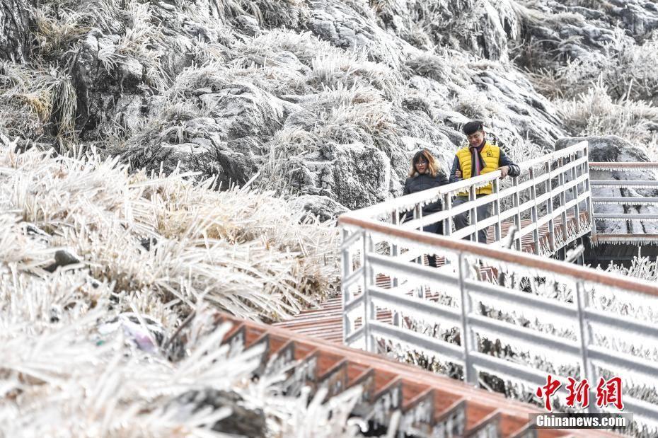 广东金子山一夜化身冰雪世界