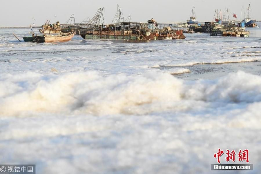 连云港沿海出现大面积海冰 景色壮观