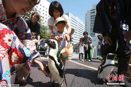 中日关系舆论调查:中国人对日好感度达14年来最高