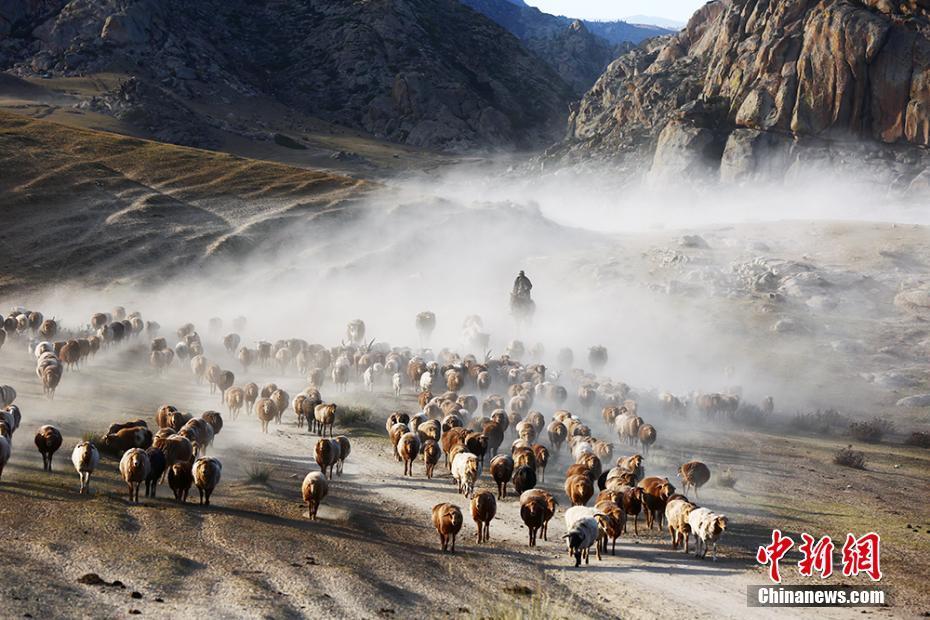 新疆牧民秋季转场