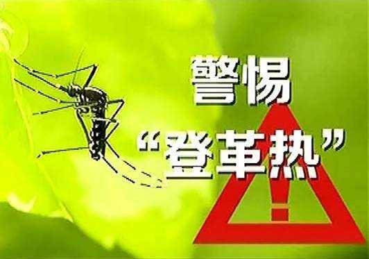 广东17地市已出现登革热本地病例疫情 蔓延风险高