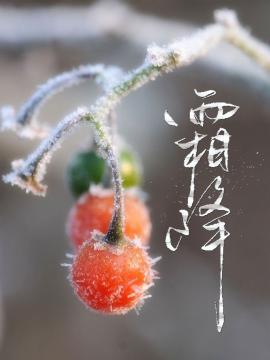 今日霜降 天气渐凉 江门仍未完全入秋