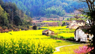 去年我国乡村旅游达25亿人次 成为国内旅游消费主市场