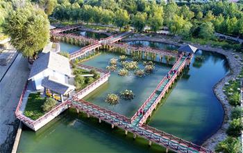 河北乐亭:废弃荒地变身生态文化公园