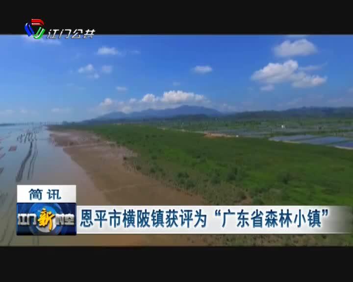 """恩平市横陂镇获评为""""广东省森林小镇"""""""