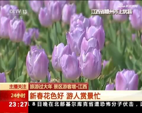 旅游过大年 景区游客增·江西:新春花色好 游人赏景忙