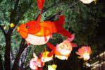 2018年新会鱼灯展正式亮灯