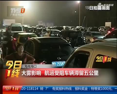 海南海口:大雾影响 航运受阻车辆滞留五公里