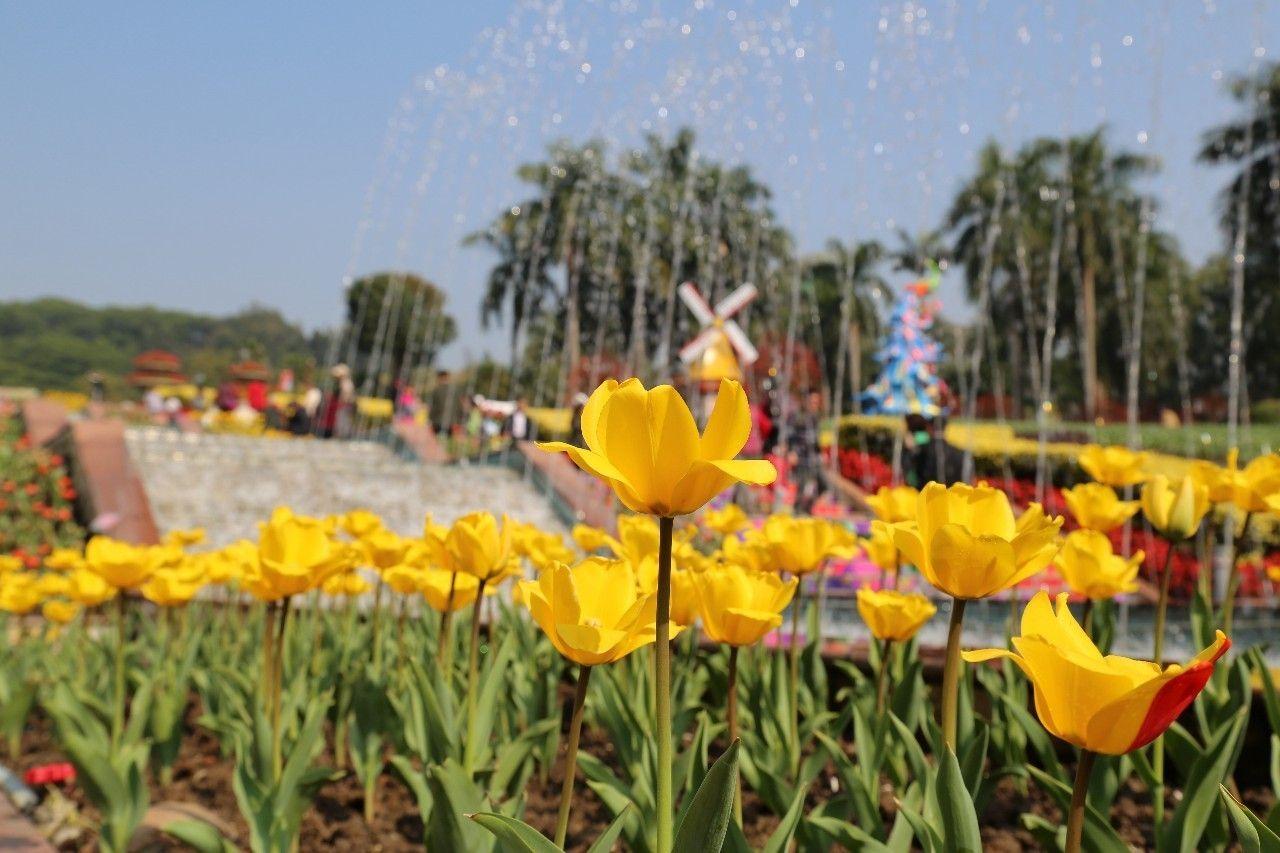 广州深圳湛江分居全省春节游客总量前三位
