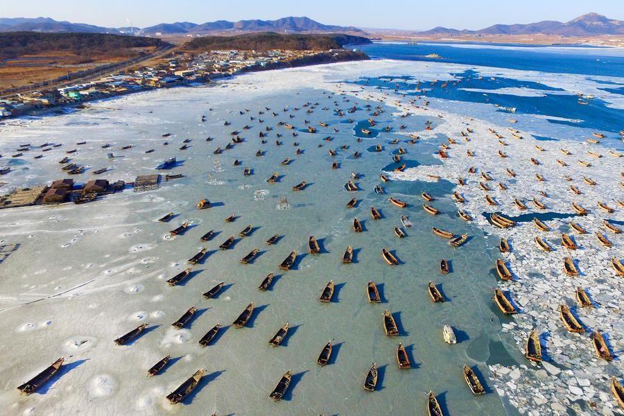 黄海现大面积海冰 千条渔船宛若被冰封
