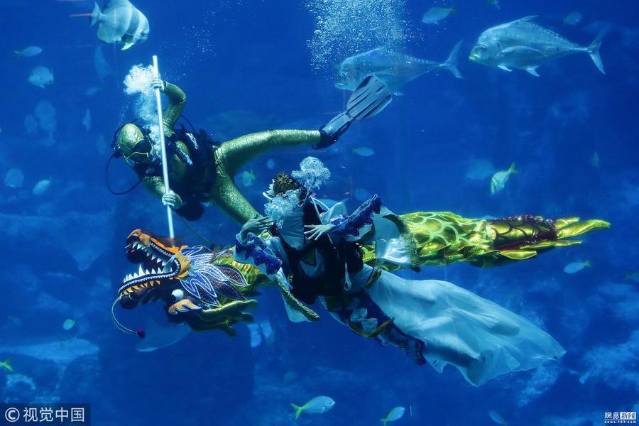 新加坡水族馆表演水下舞龙 迎接春节到来