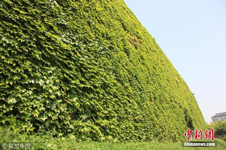 石城门变身绿色城堡