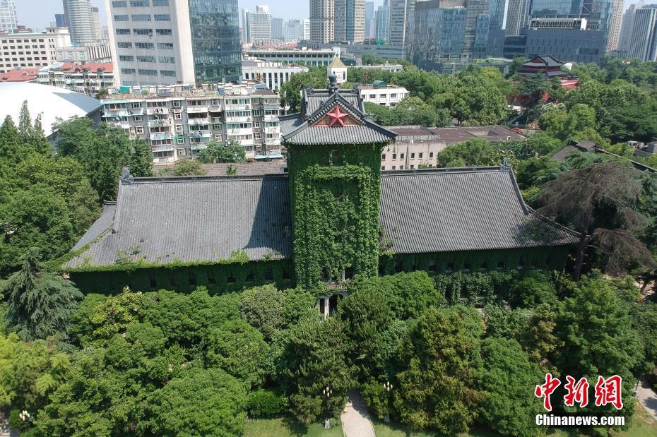 南京高校爬山虎满墙