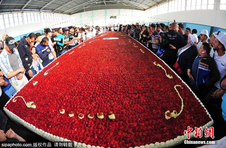 世界最大草莓派