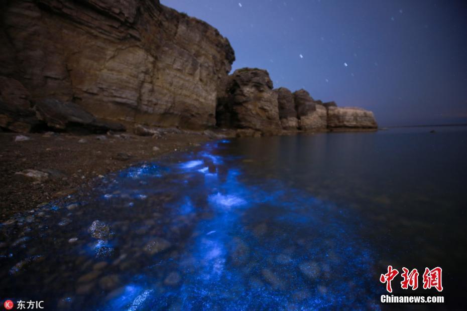 大连频现荧光海景观