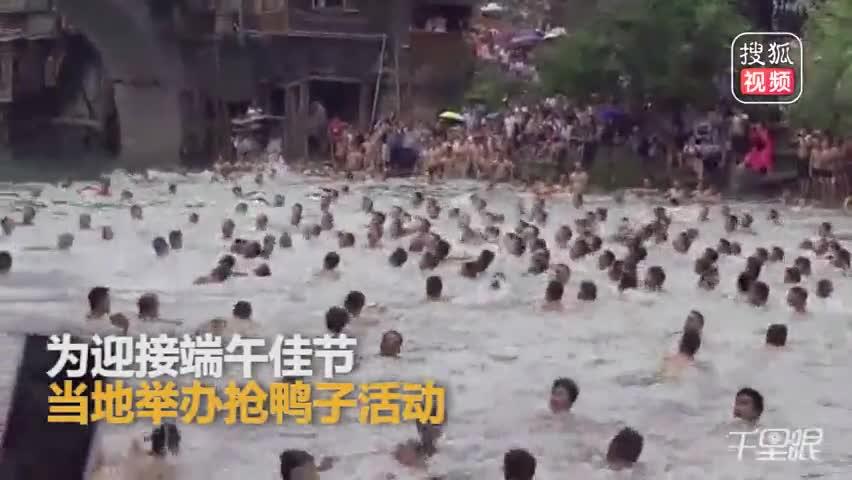 """""""下饺子""""即视感!凤凰古城万人跳江抢鸭子"""