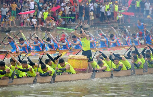 肇庆70条传统龙舟竞渡:最快3分多钟划完800米