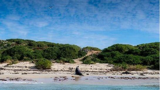西澳攻略 探访南半球与世隔绝的美丽