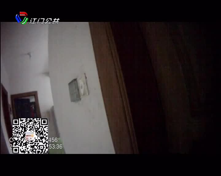 蝙蝠飞入家中吓坏女主人 警察上门帮忙