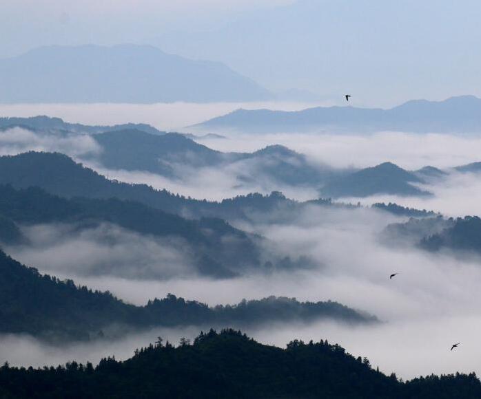 江西遂川山谷云雾缭绕