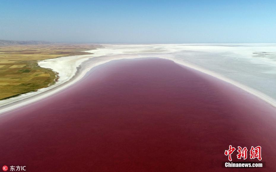 土耳其盐湖变红酒色