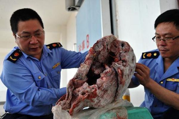 公安部通报十大食品违法案例 江门查获病死猪肉80余吨