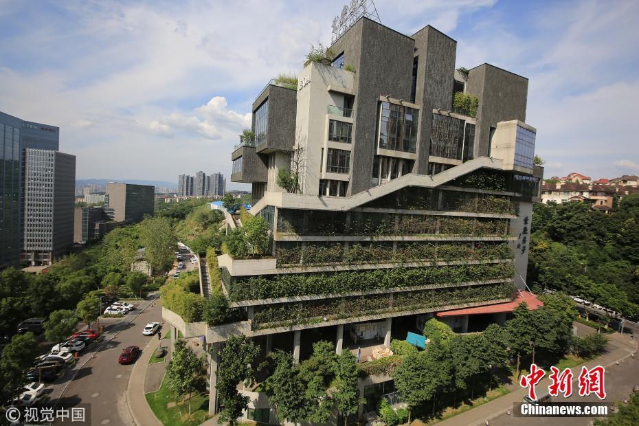 重庆建筑穿上植被
