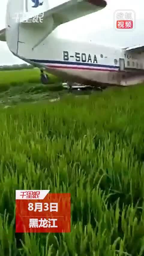 佳木斯一飞机坠落稻田