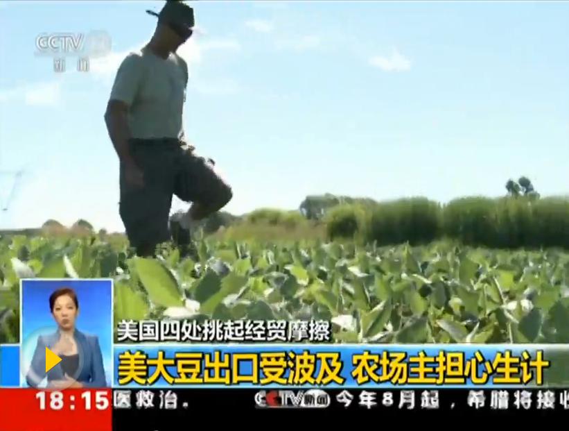 美国大豆产量将创新高 豆农忧心贸易争端