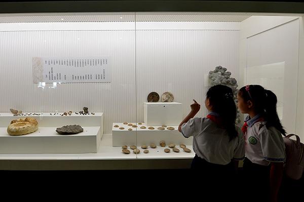 中高考文物历史知识渐多,不少孩子暑假拿着任务单逛博物馆