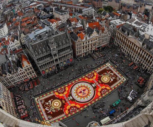 比利时展出鲜花地毯