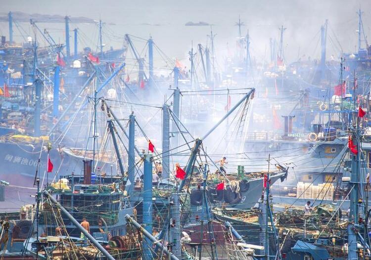 福建泉州湾开渔日 千帆竞发奔大海