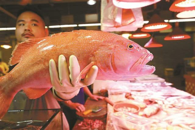 开渔第二天 上市海鲜品种增多价格略降