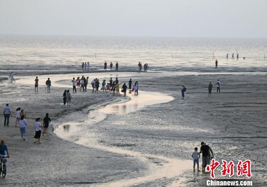 黄海条子泥日岀美景