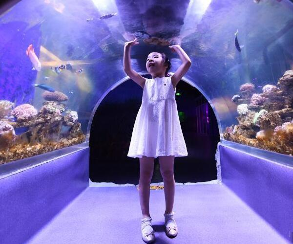 杭州商场里开动物园