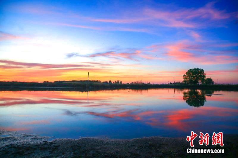 新疆湿地像缤纷梦境