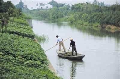 厉害了!广东已有五级河长3.78万名,累计巡河超过385万人次