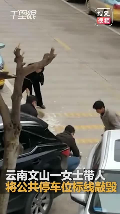 女子为方便停车 带4人用铁锤敲毁公共路标线