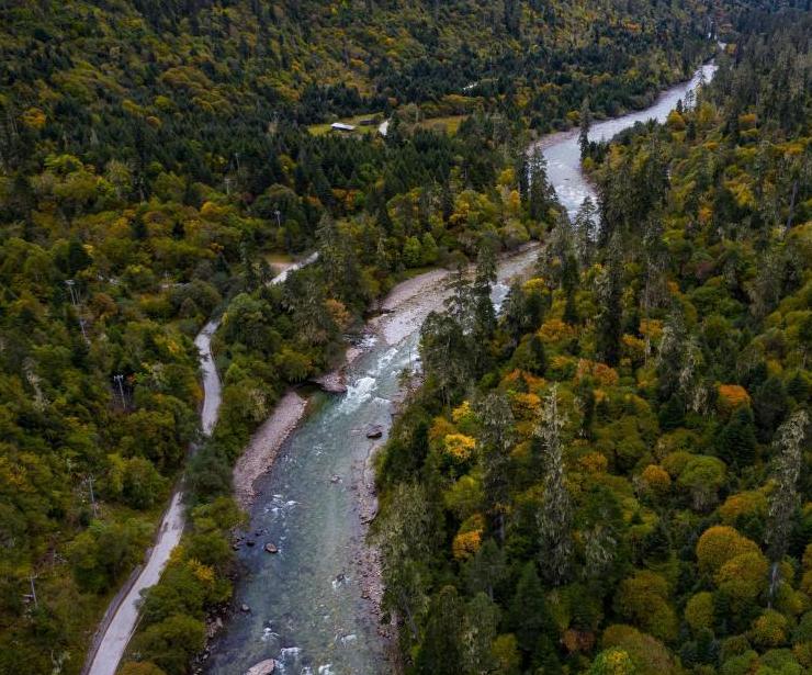 高原的秋天彩林綿延
