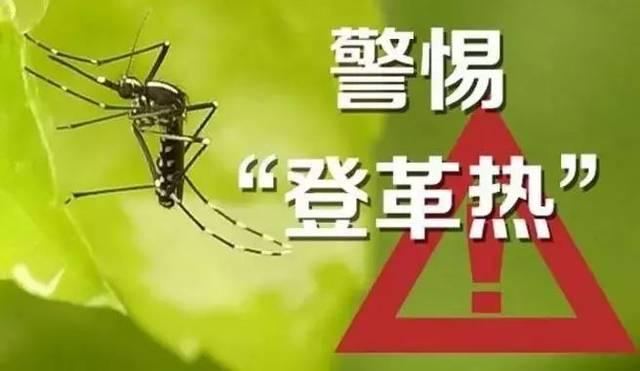 深圳灣海關連續檢出兩例輸入性登革熱病例