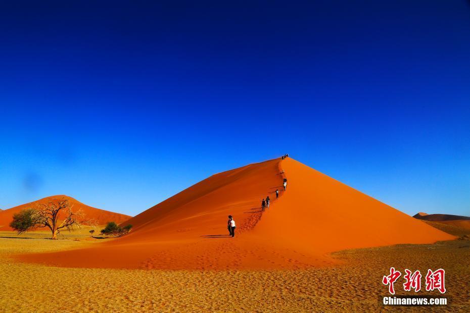 納米比亞半海半沙漠