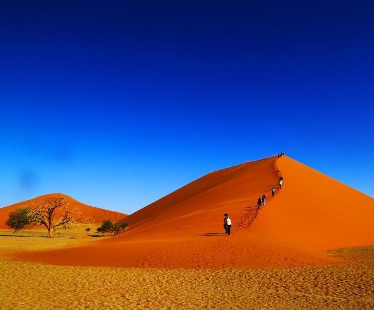 纳米比亚半海半沙漠
