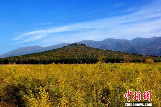 秦始皇陵控制地带要建酒店引热议 官方:不在保护区