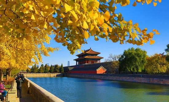 北京秋色宜人適宜出游