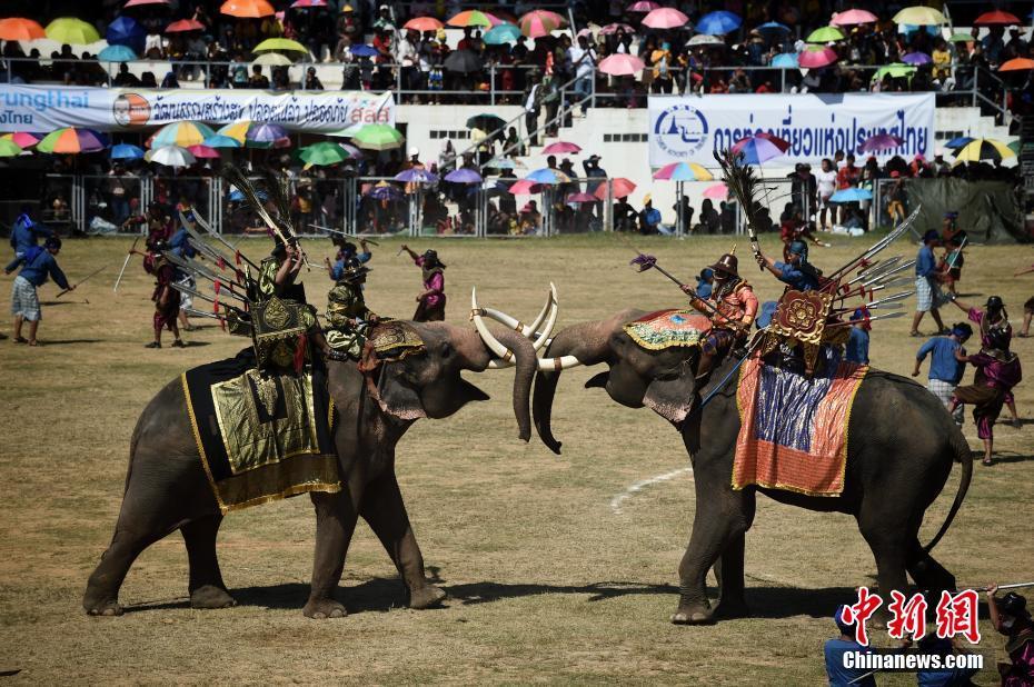 泰国大象节场面宏大