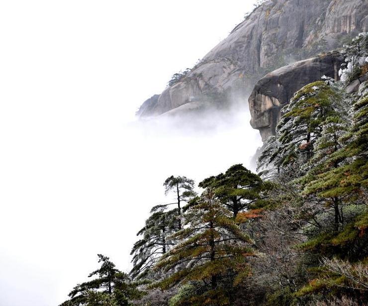 黃山迎今冬首場霧凇景觀