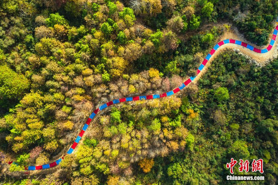 """航拍江西新干县""""彩色路"""" 红蓝相间蜿蜒山间"""