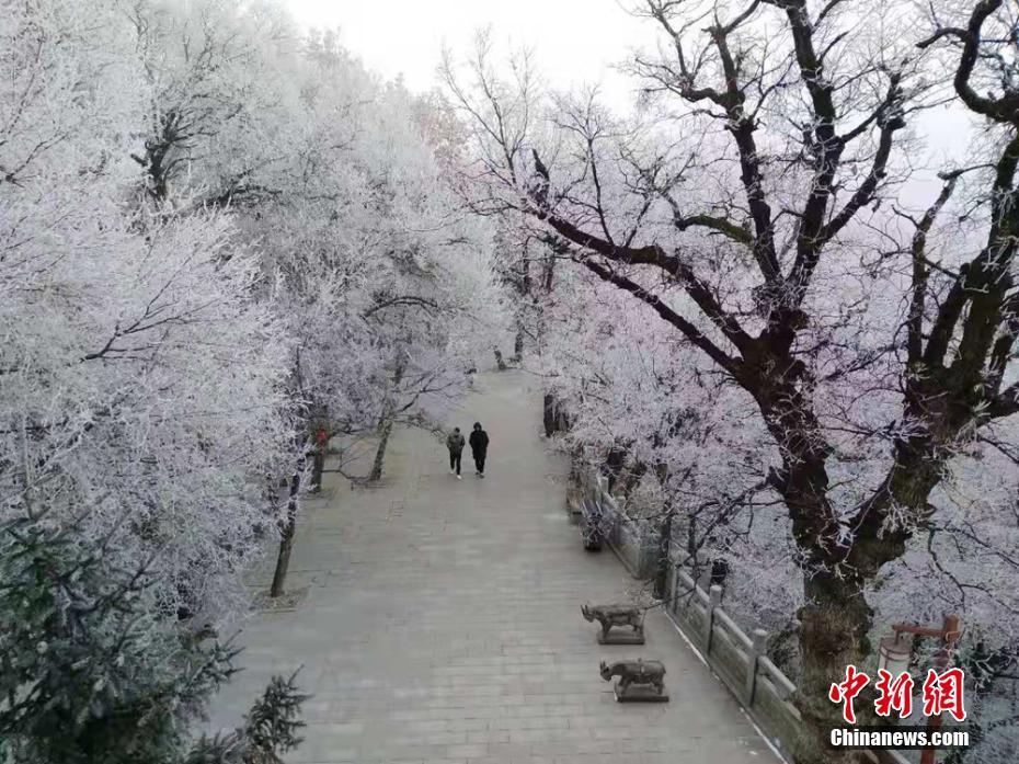 甘肃崆峒山现雾凇景观 玉树琼枝装点群山