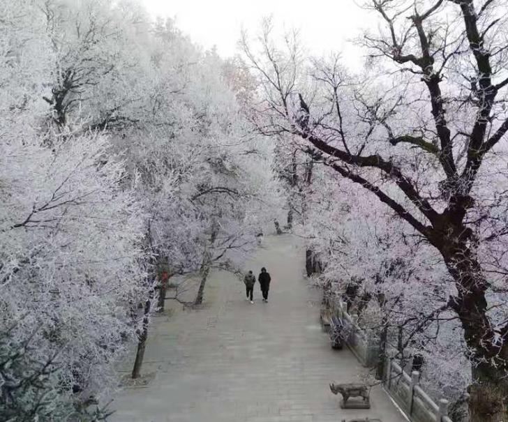 甘肅崆峒山現霧凇景觀