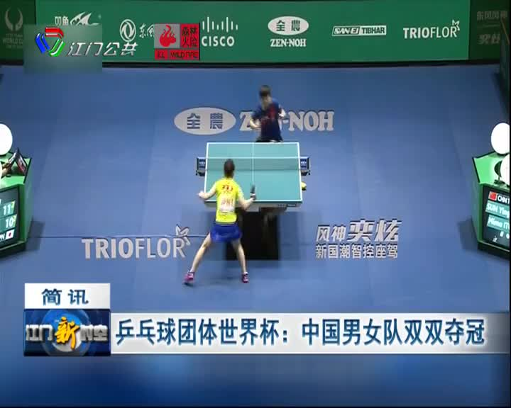 乒乓球团体世界杯:中国男女队双双夺冠